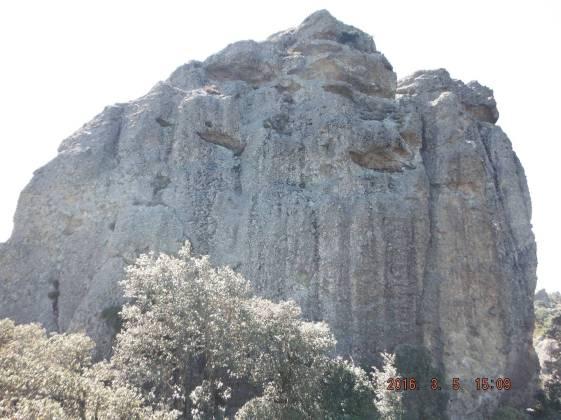 Leon-Alado-Mineral-del-chico-hidalgo.jpg